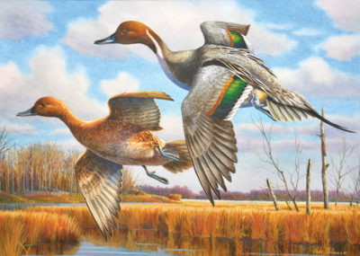 2016 Virginia Migratory Waterfowl Conservation Stamp
