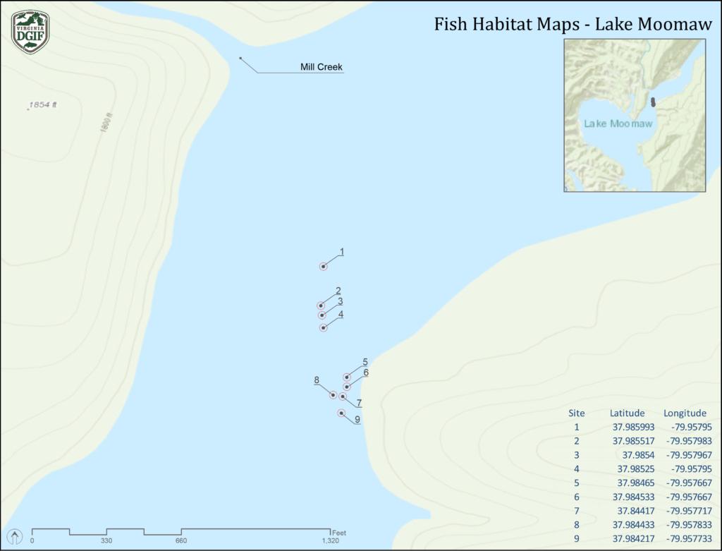 Lake Moomaw   VDGIF