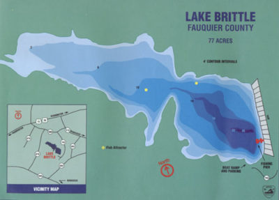 Lake_Brittle