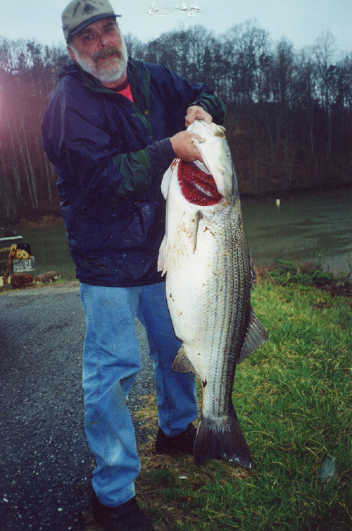 Virginia state record fish vdgif for Wv fishing report