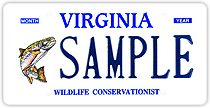 Sample of a Brook Trout Wildlife Conservationist license plate