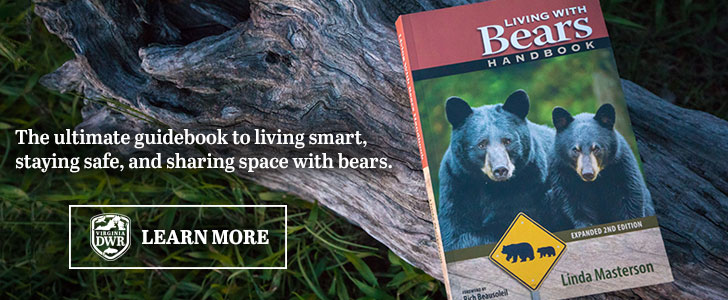 The ultimate guidebook to living smart, staying safe, and sharing space with bears.