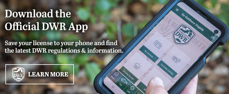 Download the offical DWR app.