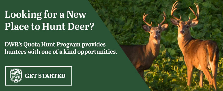 Learn more about our deer Quota Hunts.