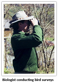 biologist-conducting-bird-surveys