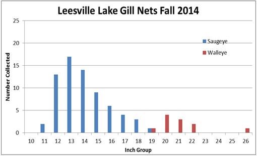 leesville-lake-14
