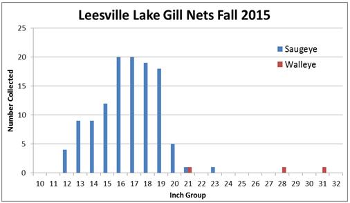 leesville-lake-15