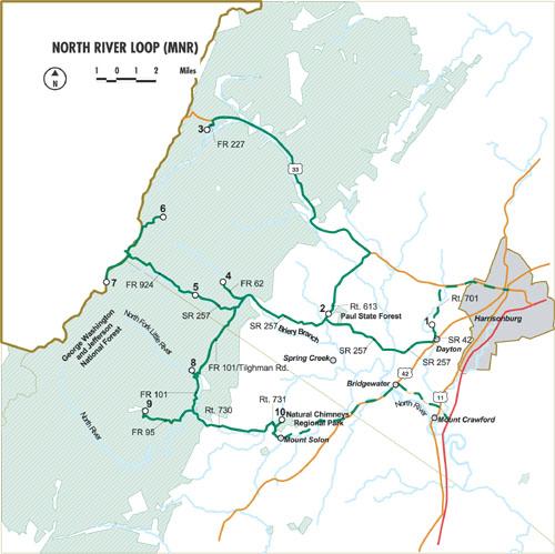 VBWT Loop: MNR