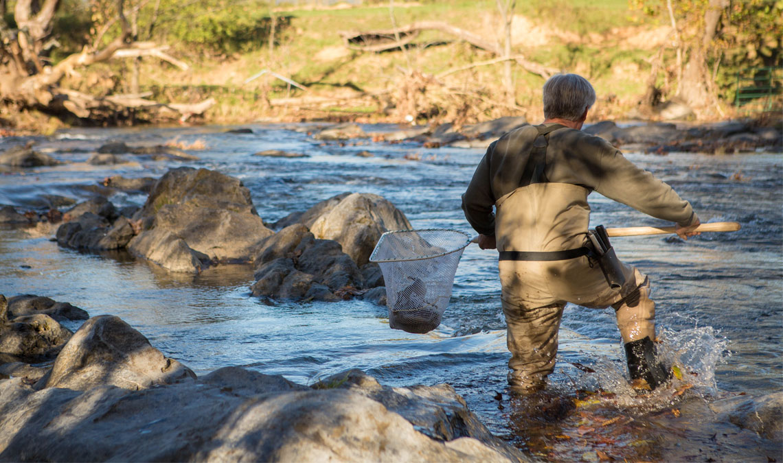 Virginia Waters Await: Fall Trout Stocking