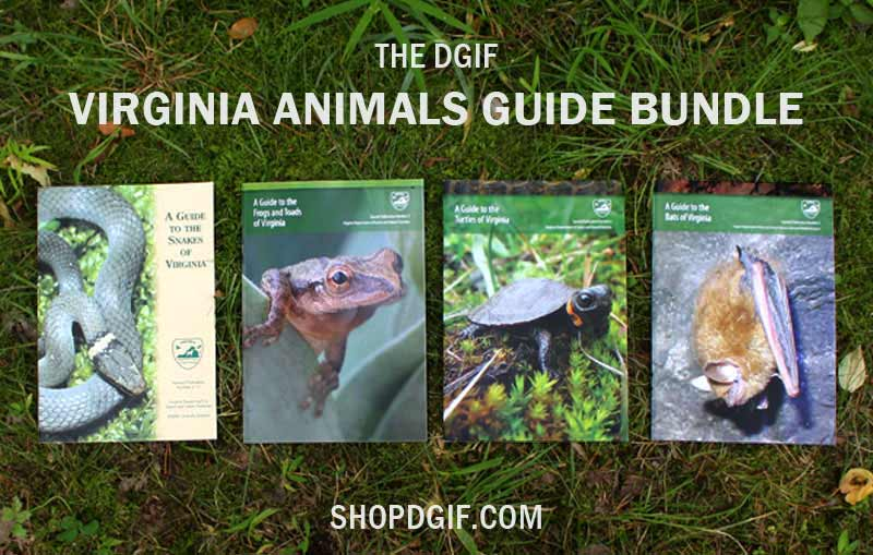 Virginia Animals Guide Bundle